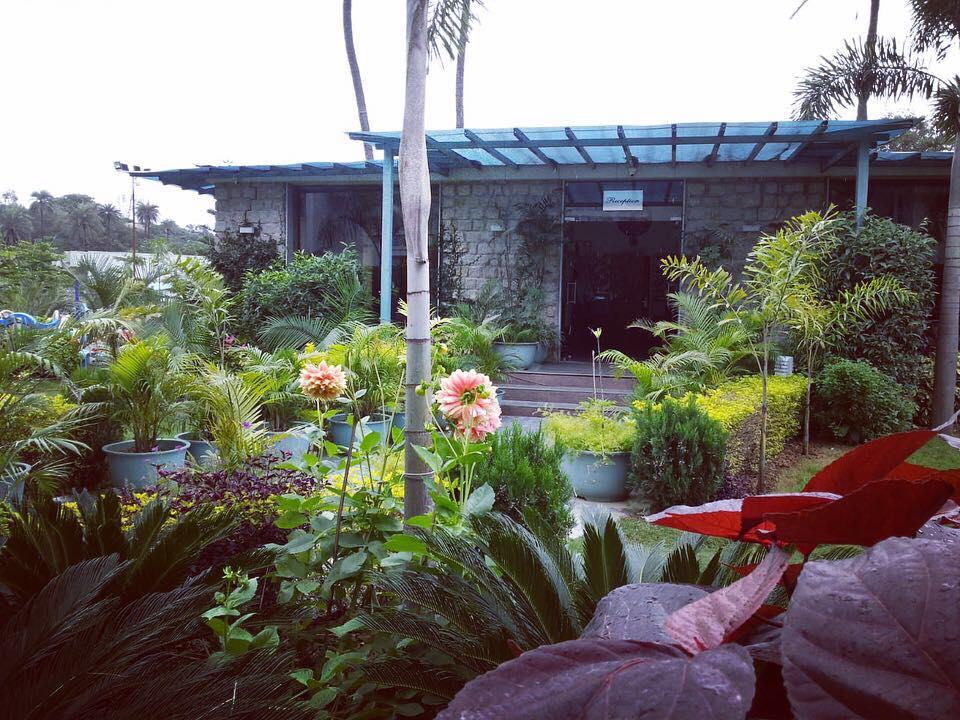 Reception- Hummingbird Resort