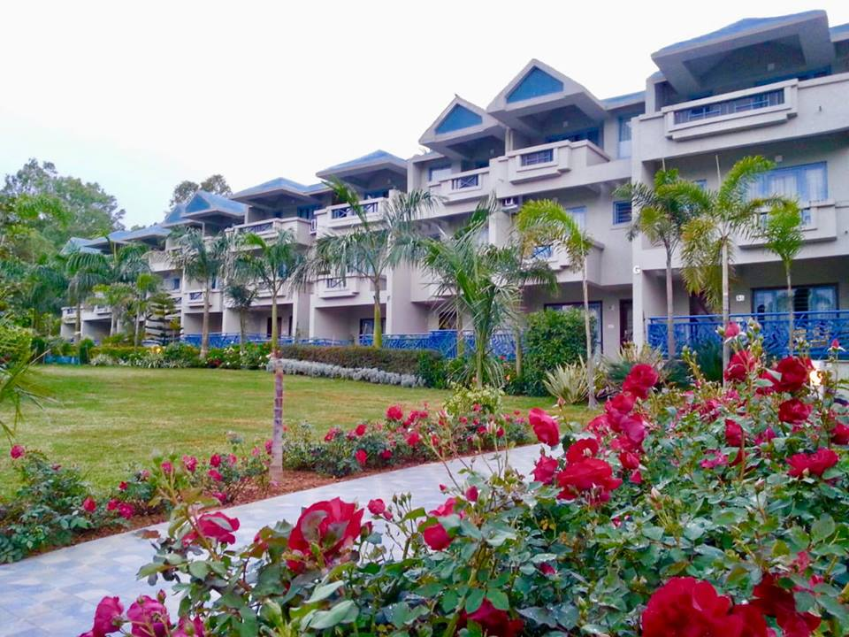 Red Flowers - Hummingbird Resort